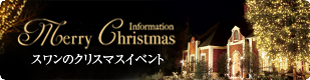 イルミネーション&クリスマス情報